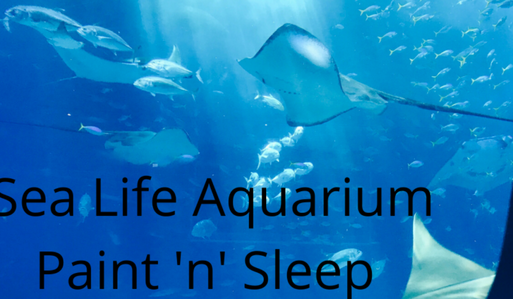 Cancelled due to COVID: SeaLife Aquarium Sleepover and Paint