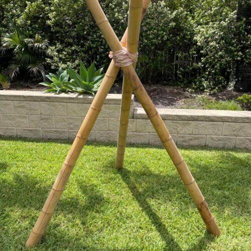 Naked Bamboo teepee